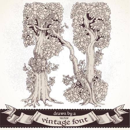 vintage: magic forest hand getekend door een vintage font - N