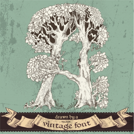 extraordinary: magic grunge forest hand drawn by a vintage font - A Illustration