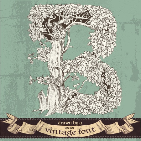 magic grunge forest hand drawn by a vintage font - B Vector