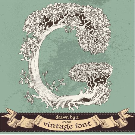 magic grunge forest hand drawn by a vintage font - G Vector