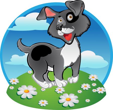 dog toy: Fun black dog on color background Illustration
