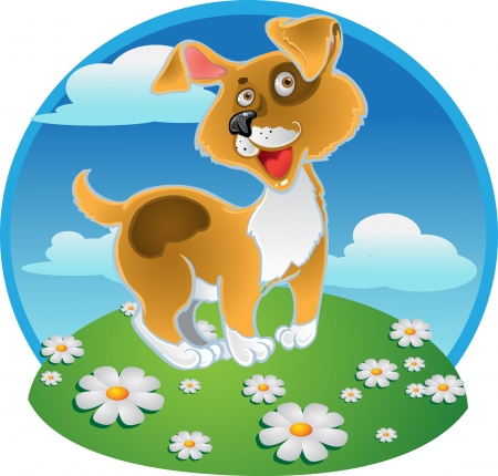 beggar's: Orange fun dog on a color background Illustration