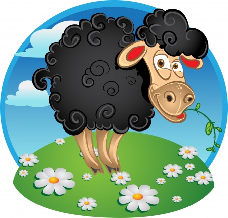 bleating: Black sheep with blade of grass on color background