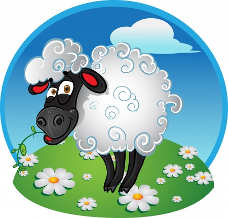 bleating: Sheep with blade of grass on color background