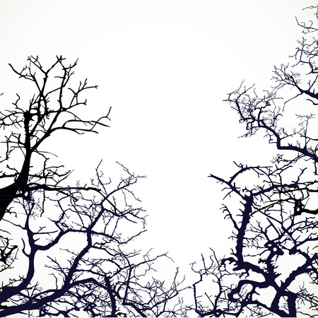 Background with silhouettes of bare branches of trees Vector