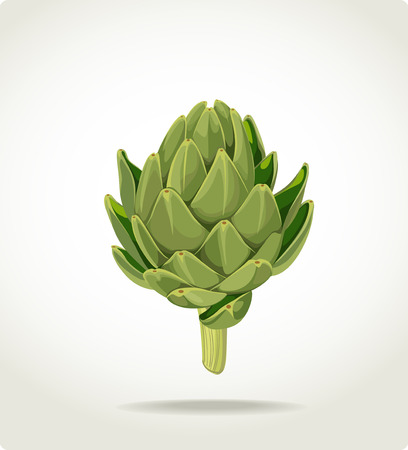green fresh useful eco-friendly artichoke Vector