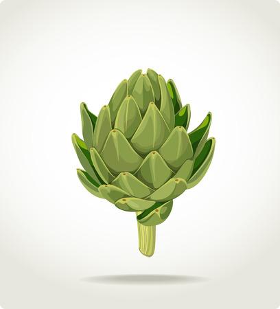 groene vers nuttige milieuvriendelijke artisjok Vector Illustratie
