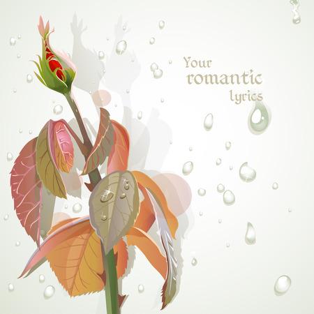 lyrics: Rosebud with a field for your lyrics. Romantic banner 2 Illustration