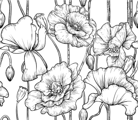seamless pattern of black and white poppies Vector