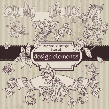 Set of vector vintage magic fairytale floral design elements Vector
