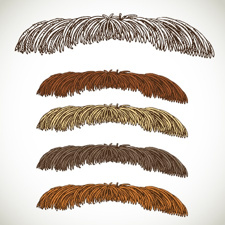 fake mustaches: Thin male antennae