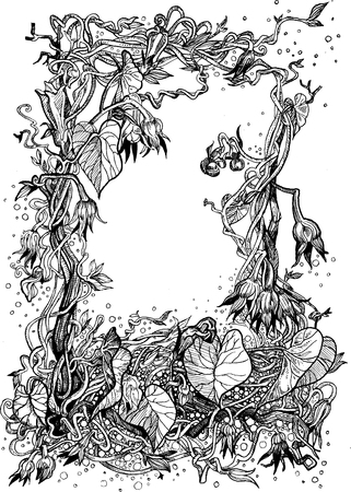 bindweed: Decorative frame of bindweed Illustration
