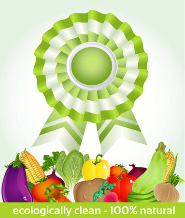 star award for environmentally friendly fresh product Stock Vector - 23152202