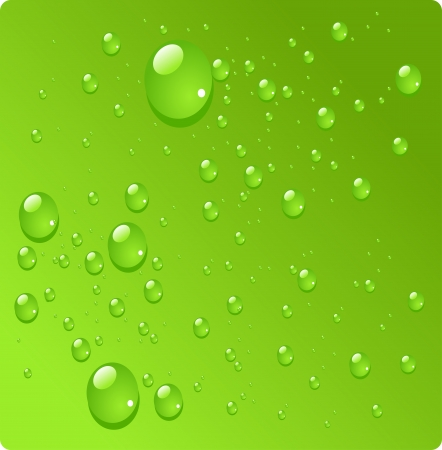 Water drops on green background Stock Vector - 23152190