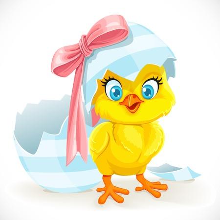 復活祭の卵から孵化したばかりのかわいい赤ちゃんひよこ  イラスト・ベクター素材