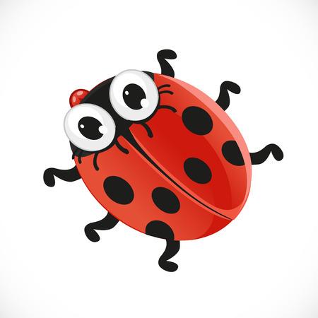 coccinellidae: Cute baby ladybug isolated on white background Illustration