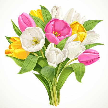 白い背景に分離された白、ピンクと黄色のチューリップの花束  イラスト・ベクター素材