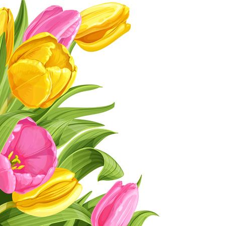 Achtergrond van roze en gele tulpen op witte achtergrond Stock Illustratie