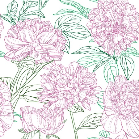 Seamless pattern of pink peonies graphics Vector