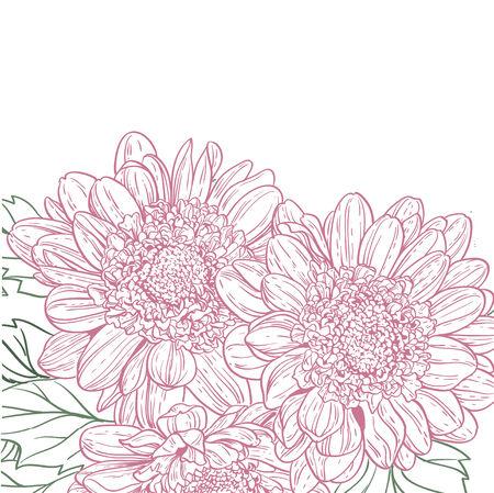 Line drawings chrysanthemum background Vector