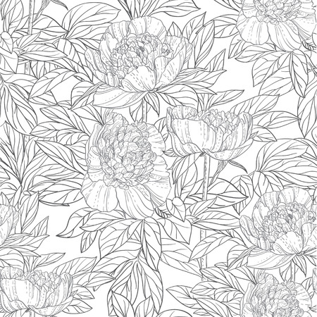 Seamless pattern of flowers peonies black and white graphics Vector