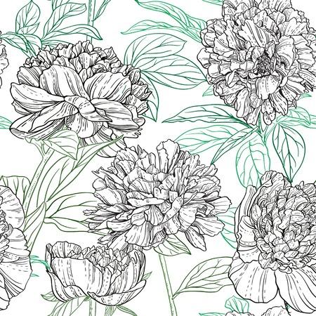 dibujos lineales: Seamless patrón de peonías gráficos