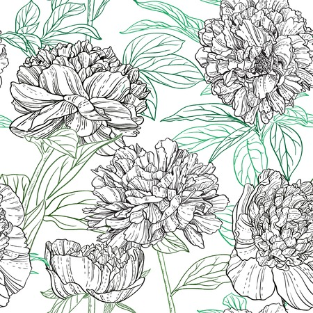 line drawings: Seamless pattern of peonies graphics
