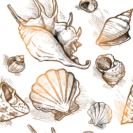 Seamless pattern from of different shapes shell  sketches 1 Vector