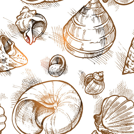 Seamless pattern from of different shapes shell  sketches 2 Vector