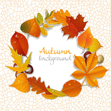 Yellow and red autumn leaves and chestnut wreath background