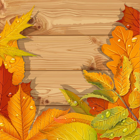aronia: Yellow and red autumn leaves wooden background Illustration