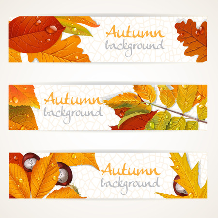 Vector horizontal autumn leaves banners Vector