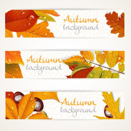 aronia: Vector horizontal autumn leaves banners Illustration
