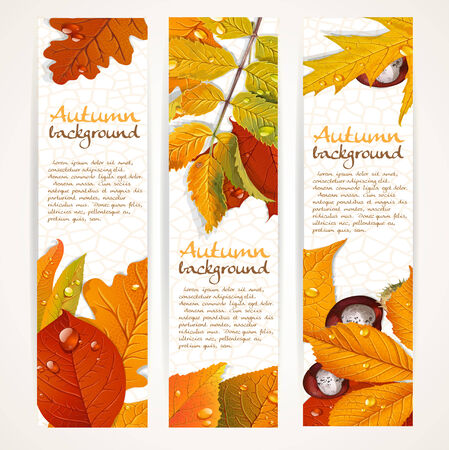 aronia: Vector vertical autumn leaves banners
