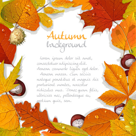 chokeberry: Yellow and red autumn leaves and chestnut background for your text