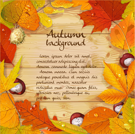 aronia: Yellow and red autumn leaves and chestnut wood background for your text