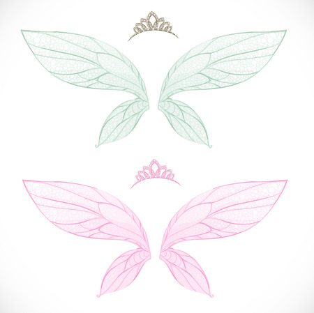 Fairy wings with tiara bundled isolated on a white background Illustration