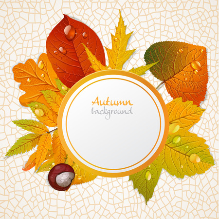 round autumn leaves banner Vector