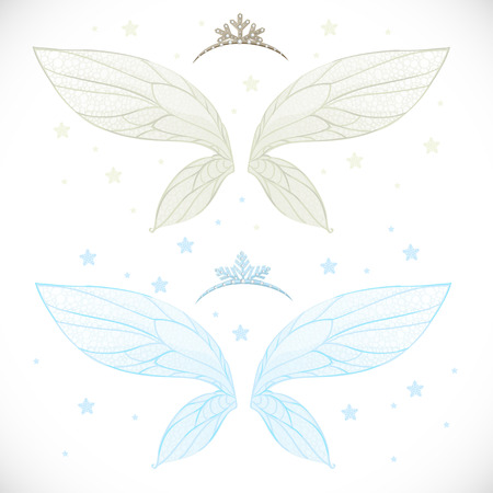 object complement: Winter fairy wings with tiara bundled isolated on a white background with snowflakes