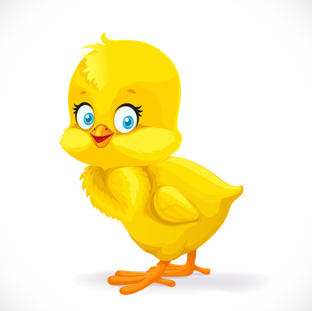 Cute yellow cartoon chick isolated on a white background