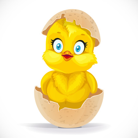 Fluffy little cartoon chick hatched from an egg isolated on a white background