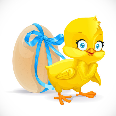 chicken and egg: Fluffy little chicken and egg tied with a blue ribbon isolated on a white background