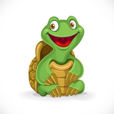 turtle isolated: Tortuga beb� de dibujos animados lindo aislado en el fondo blanco