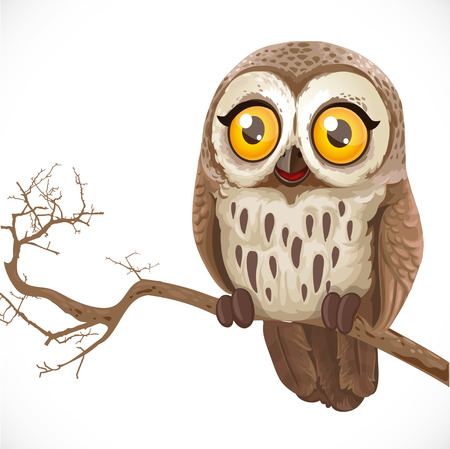 Cute cartoon owl sitting on a branch isolated on a white background Çizim