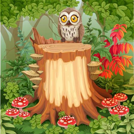 妖精の森 glade 切り株囲まれて毒キノコ - あなたのテキストのための場所の上に座ってかわいいフクロウを  イラスト・ベクター素材