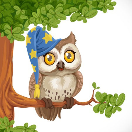 humor: Cute owl wearing a hat sitting on a tree branch isolated on a white background