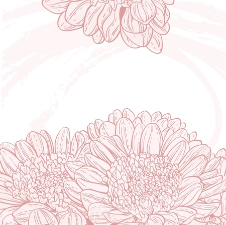 line drawings: Line drawings pink chrysanthemum grunge background Illustration