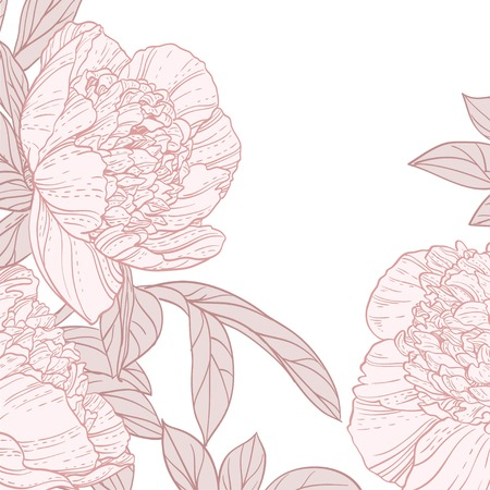 Beautiful peonies line art background
