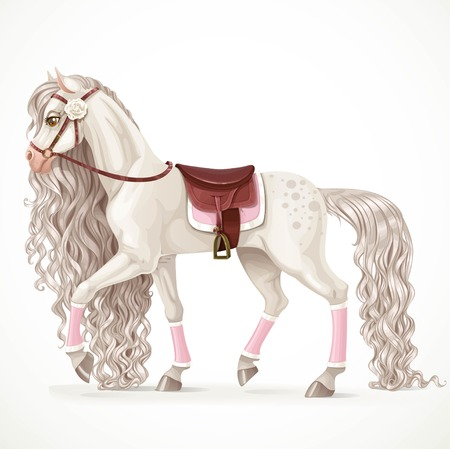 moving in: Beautiful white horse with a long mane and saddle blanket isolated on a white background