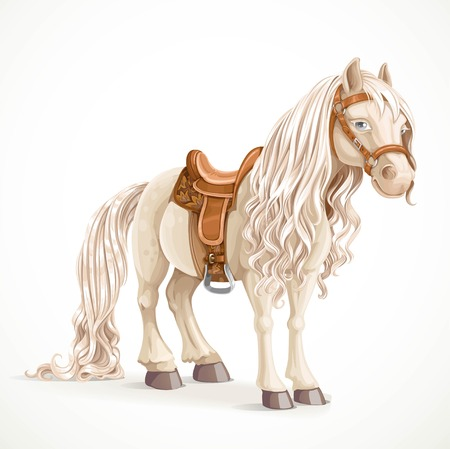 pony tail: Cute saddled little pony horse isolated on a white background
